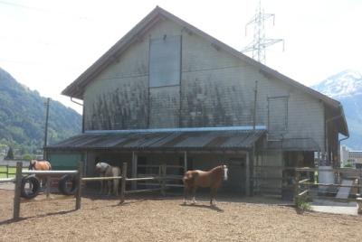 Pferdestallungen